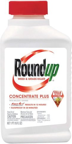 7. Roundup Weed & Grass Killer Concentrate Plus